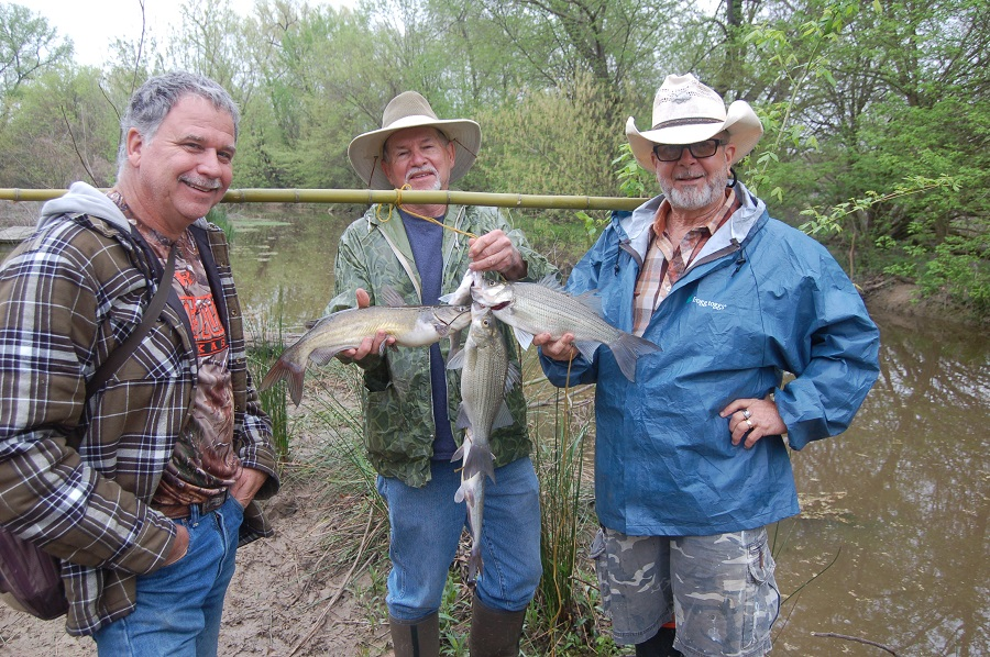 High Plains Outdoors White Bass Run Coming To A Lake Near You Hppr