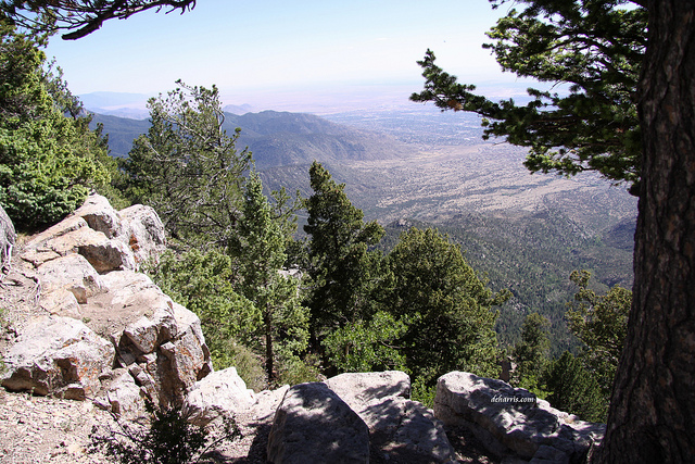 MON: Missing Hiker Found Dead In Sandia Mountains