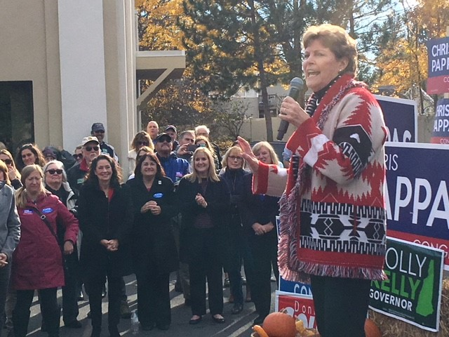 In Shaheen, N.H. Democrats Have Their Leader, And A Blueprint For Campaigning