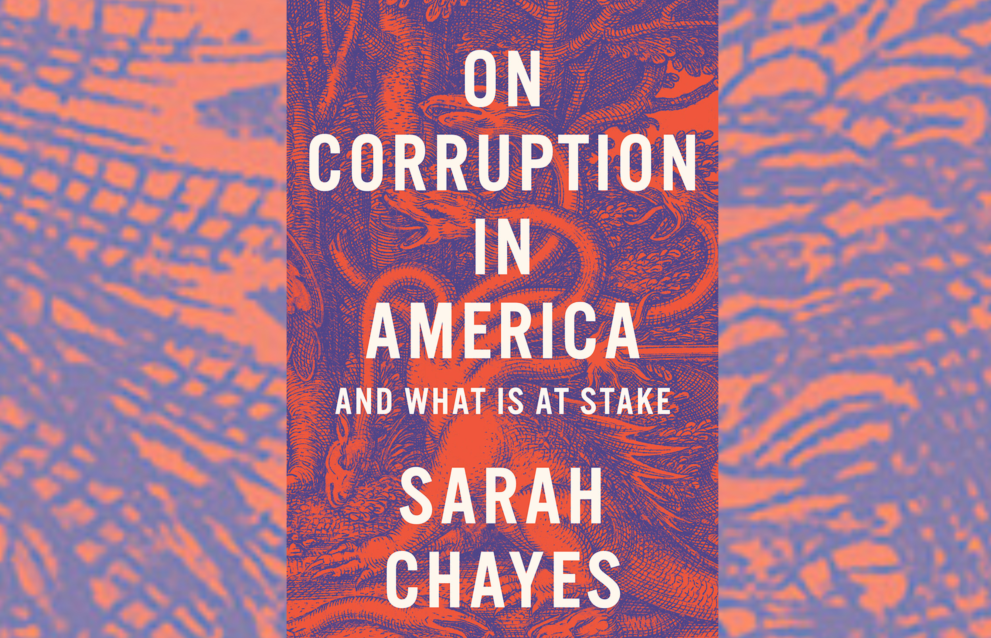 On Corruption In America And What Is At Stake By Sarah Chayes Wamc